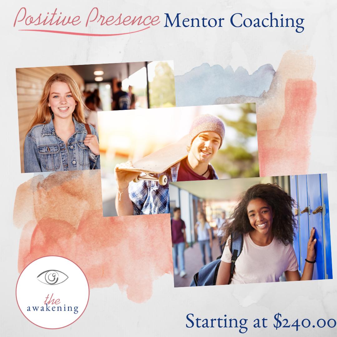 mentor coaching 240